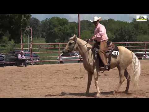 Missouri Fox Trotter Ava 2018 Open Ranchhorse Versatility WC