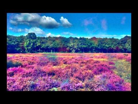 Progressive Psy-Trance Mix Vol. 1 By Vissow