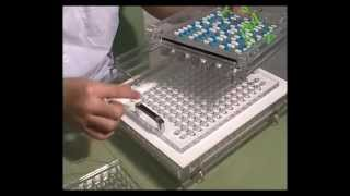 Semi-automatic capsule fillers,capsule machines,encapsulation machine for empty gelatin capsules.mp4
