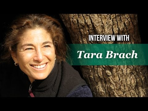 The Foundations of Well-Being: Self-Caring Interview Excerpt with Rick Hanson and Tara Brach