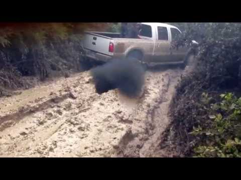 Big Trucks Mudding Triple D