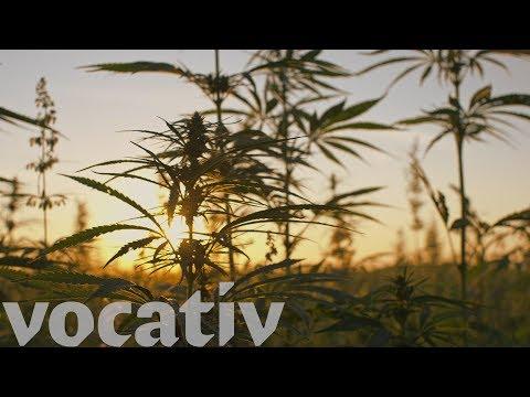 American Green Marijuana Distributors Buy Nipton, CA To Create A Pot-Lovers' Paradise