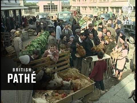 West Coast Of Ireland (1965)