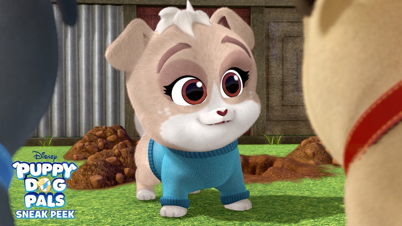 Meet Keia Puppy Dog Pals Disney Junior Youtube
