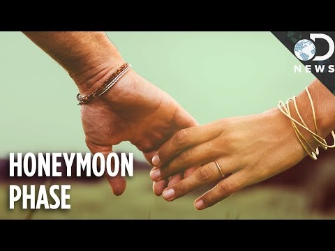 how long does honeymoon phase dating last