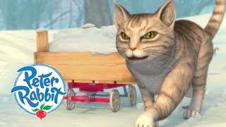 Peter Rabbit - Cat Attack! | Cartoons for Kids