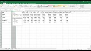 Excel Magic Tricks with Mouse