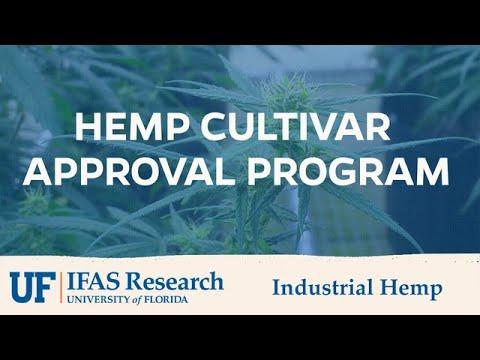 UF/IFAS Industrial Hemp Approval Program