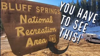 Free Camping! Bluff Spŗing National Recreation Area - Cloudcroft, New Mexico