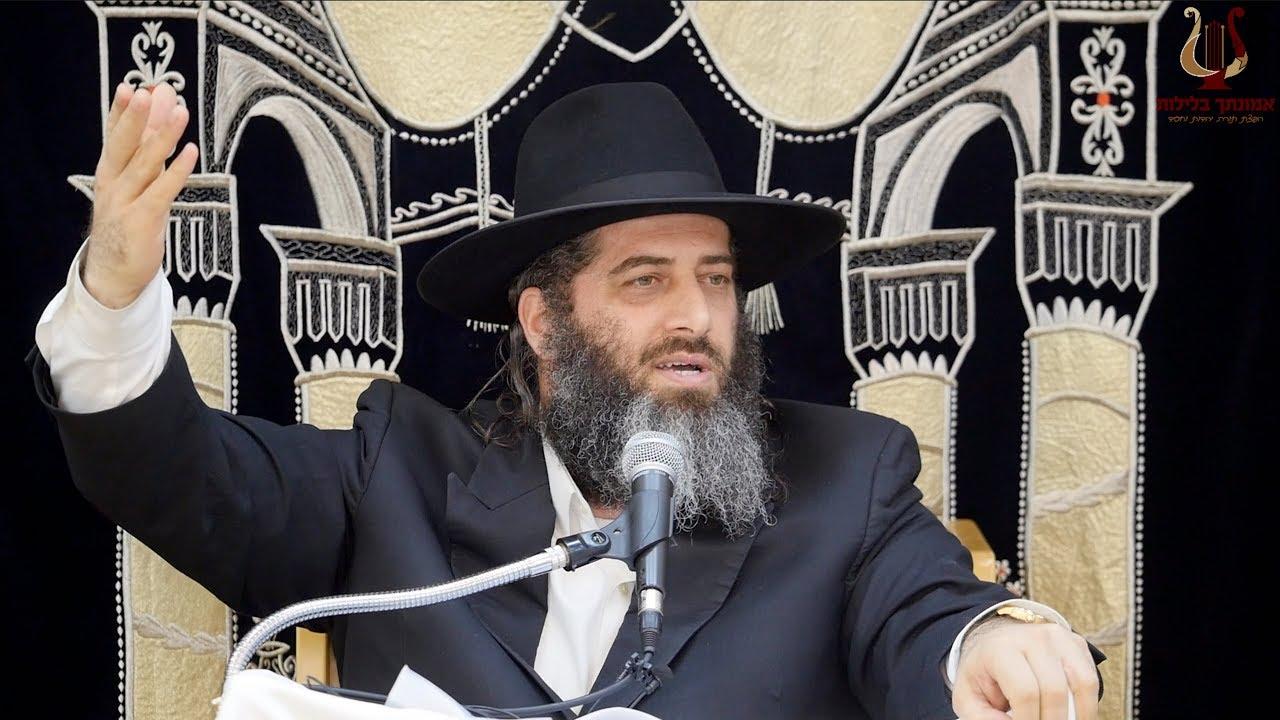 הרב רונן שאולוב מגיב לסרטון ההסתה והשנאה של כופרי ושונאי ישראל על גלגולה ואונס דינה בת יעקב !!!