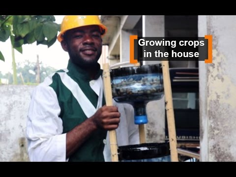 Cameroon: Growing crops in the house