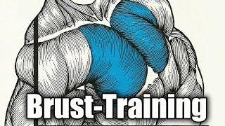 Brustmuskeltraining - Einführung