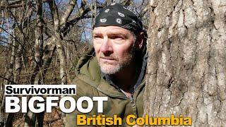 Survivorman Bigfoot   Episode 2   British Columbia   Les Stroud   Todd Standing