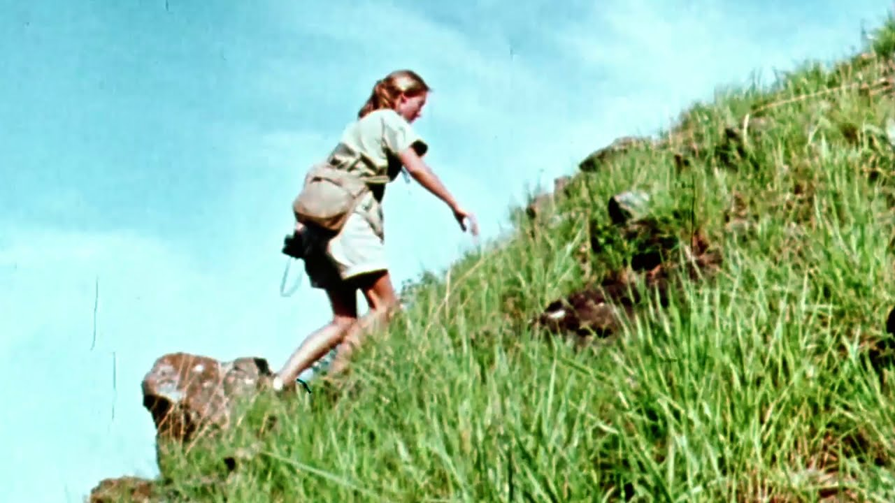 Jane Goodall's Legacy of Science & Discovery in Gombe