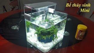 Hướng dẫn cách làm bể cá cảnh thủy sinh mini đơn giản