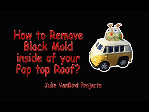 How to remove mold from your Van or Westfalia roof pop top?