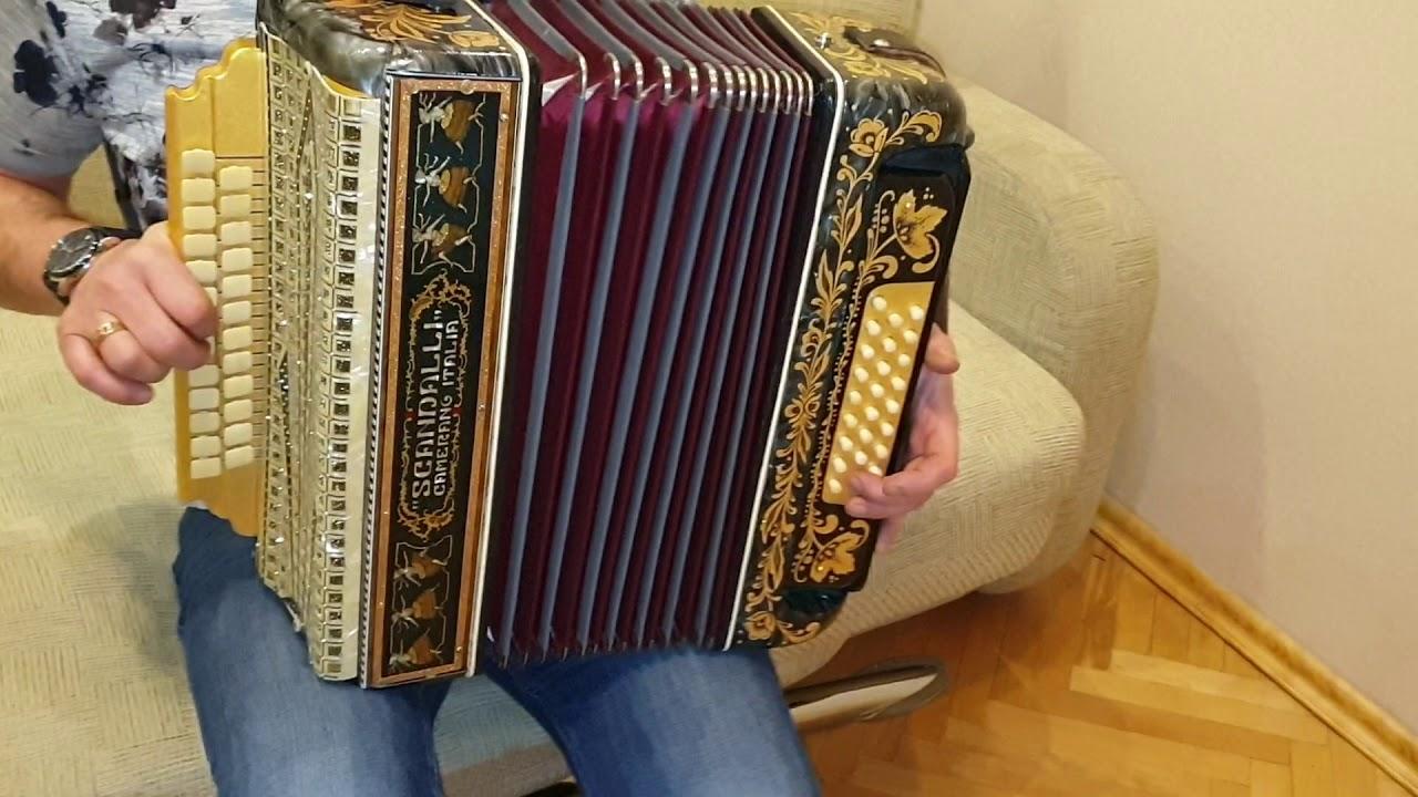 Паша гармонист - мелодии на новой гармошке