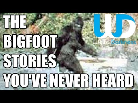 """The Bigfoot Stories You've Never Heard"" #WeirdDarkness"