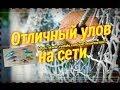 видео Супер улов на сети.Рыбалка. смотреть ролики