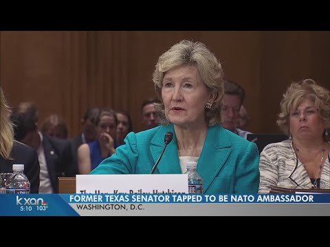 Kay Bailey Hutchison responds to Russia questions at confirmation hearing