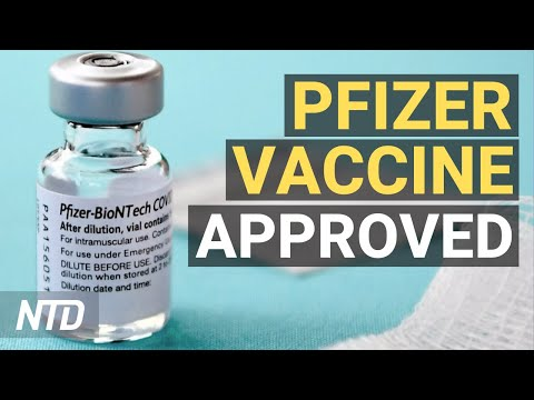 FDA Grants Full Approval of Pfizer Shot; Manufacturers Facing Supply Chain Problems | NTD Business