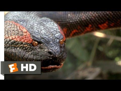 Anaconda (8/8) Movie CLIP - Swallowed Whole (1997) HD