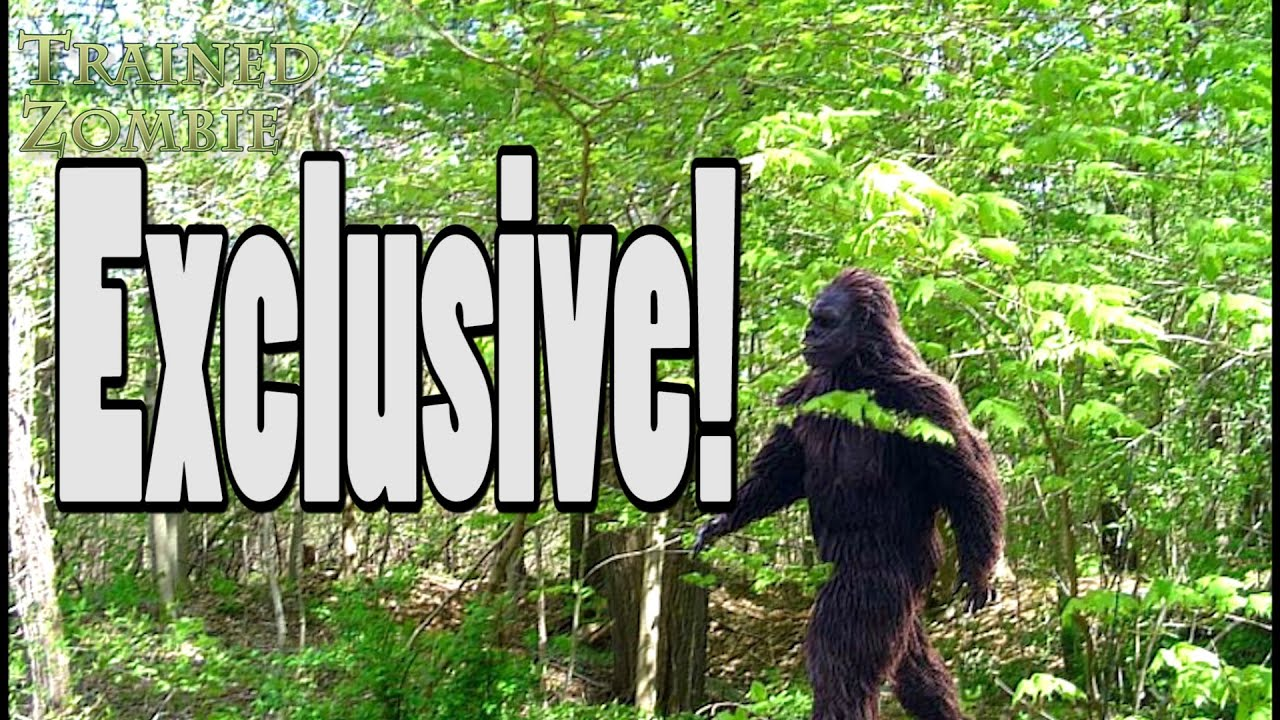 Proof bigfoot exists government coverup of sasquatch exposed by proof bigfoot exists government coverup of sasquatch exposed by china sciox Images
