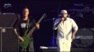 Limp Bizkit - Live Hellfest 2015