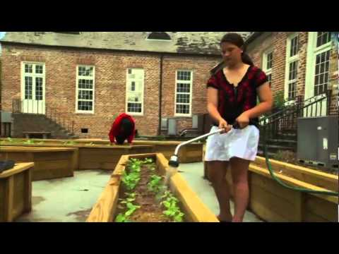 Metairie Park Country Day School- The Big Picture