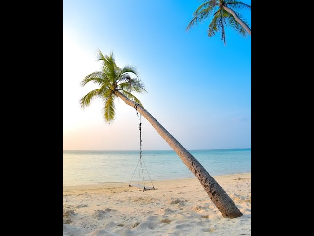 Come to the Beach Relaxation