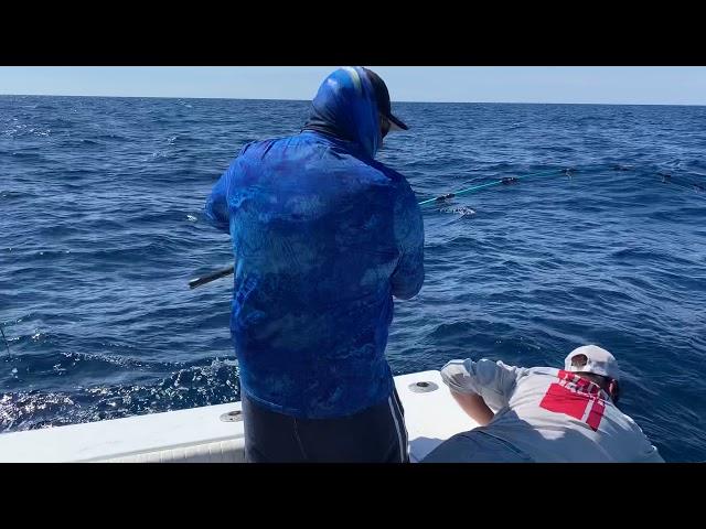 Sport Fishing - Bad Habit Sport Fishing