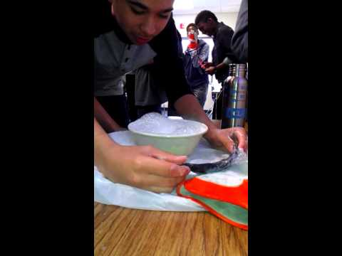 Cobalt Middle School Science Project