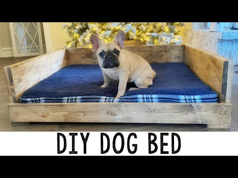 DIY Dog Bed And Our New Furbo Dog Camera