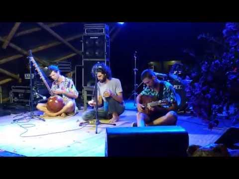 O canto das baleias-jubarte no Blues Jazz Festival Serra Grande