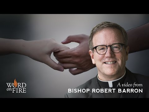 Bishop Barron on Contraception and Social Change