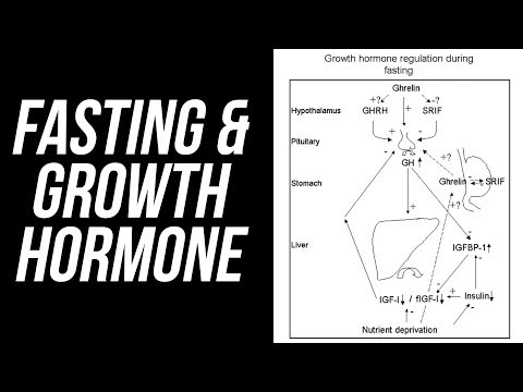 Fasting, Growth Hormone & Autophagy