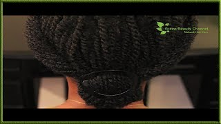 Natural Hairstyle ~ Twist Updo Protective Style (Re-Upload) Thumbnail