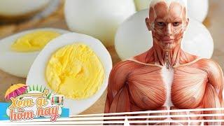 Chuyện Gì Xảy Ra Nếu Chúng Ta Ăn 3 Quả Trứng Mỗi Ngày