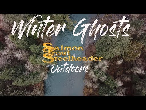 Chasing Winter Steelhead On The Oregon Coast-