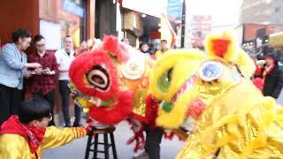 Chinese New Year  2019 8