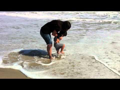 Beach Bum Trailer