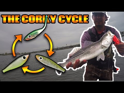 The Corky Cycle | Fishing with Paul Brown Lures