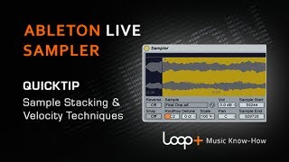 Stacking Samples & Velocity Tips For Ableton Sampler - Loop+ Quick Tip