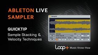 Stacking Samples Velocity Tips For Ableton Sampler - Loop+ Quick Tip