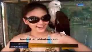 Repeat youtube video Isu Kontroversi- Wajarkah(Fasha Berbikini)