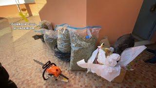 Desmantelado en Cieza un punto de almacenamiento de marihuana