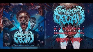 DIMENSIONAL DECAY - INHUMAN CONDITION [OFFICIAL ALBUM STREAM] (2019) SW EXCLUSIVE