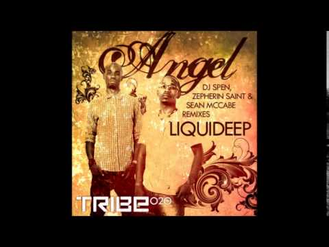 Liquideep - Angel(dj spen mix short edit)