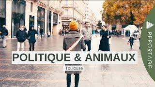 Politique & Animaux - Toulouse novembre 2019