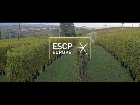 ESCP Europe's Master in IFBM Company visit: Langhe's excellent wineries tour
